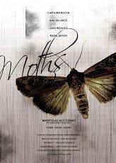 Mariposas nocturnas. Moths
