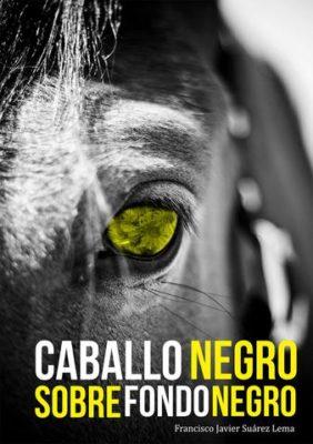 CABALLO NEGRO SOBRE FONDO NEGRO